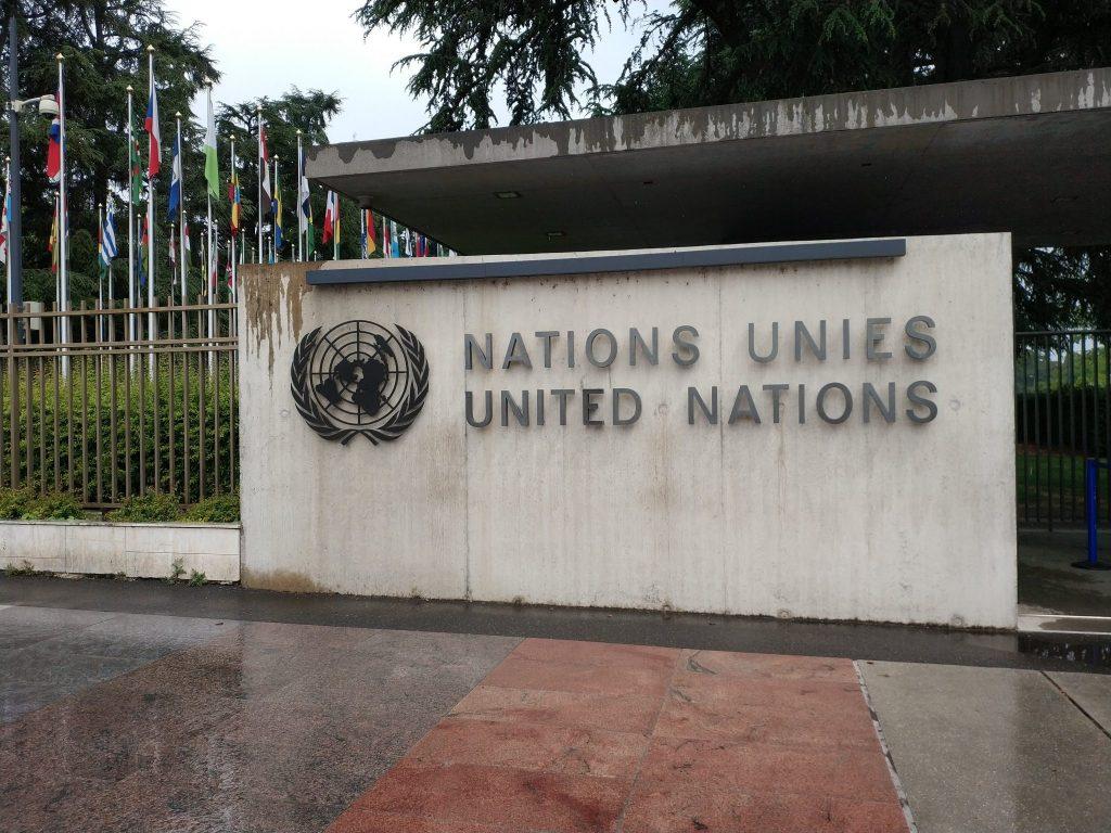 Grupa Robocza ONZ
