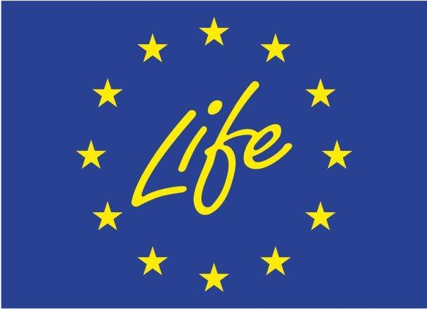 LIFE flaga