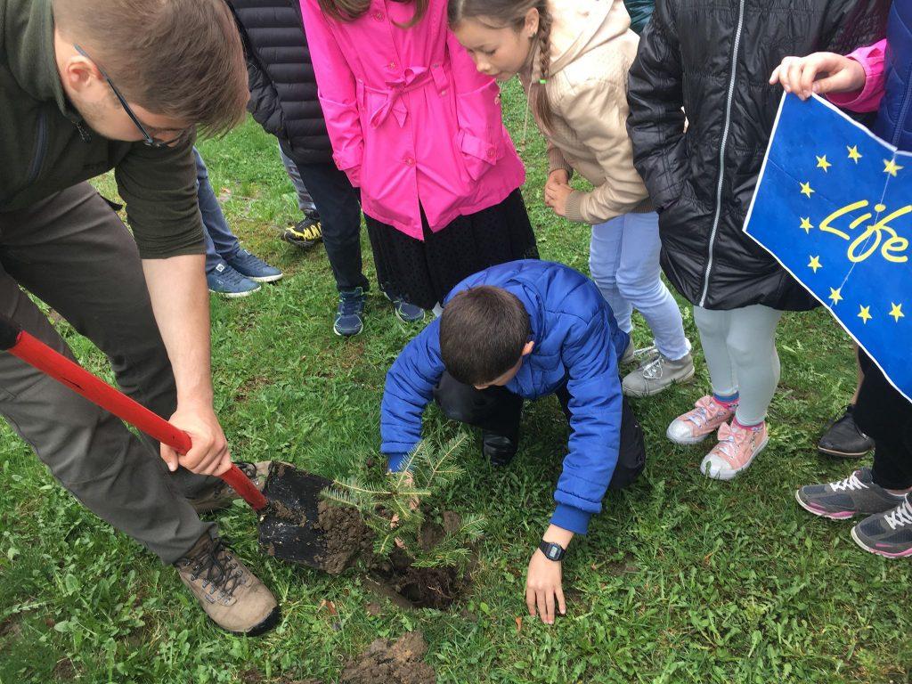 29 04 19r - Sadzenie drzew SP Morawczyna 3
